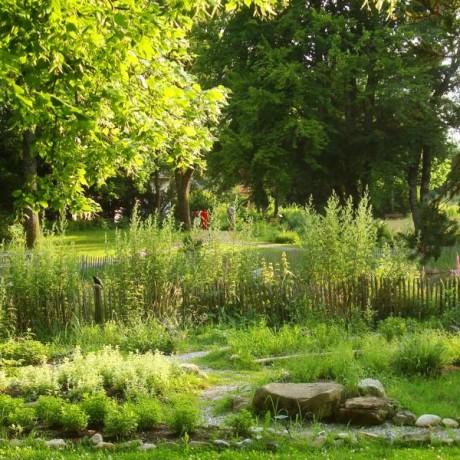 Kräuterpark 3